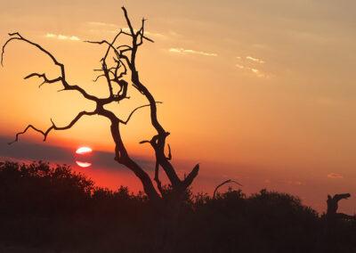 Chobe4x4 Self Drive Botswana Adventure