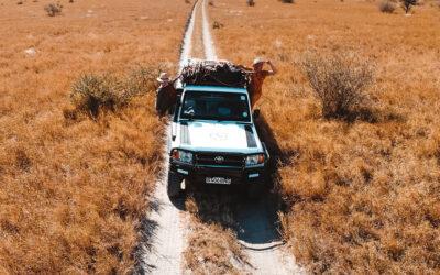 CHOBE4X4 | SAFARI IN BOTSWANA