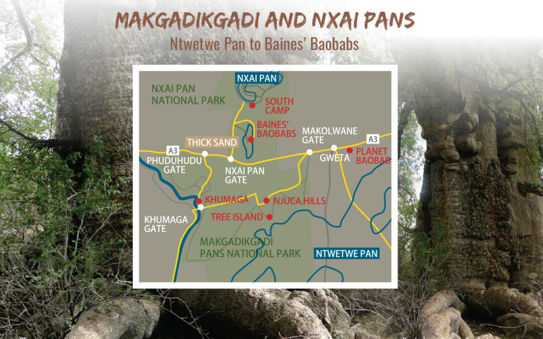 Makgadikgadi & Nxai Pan