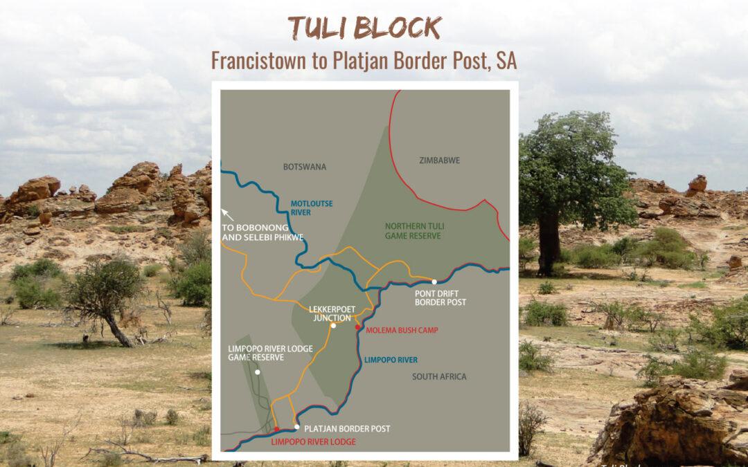 Tuli Block